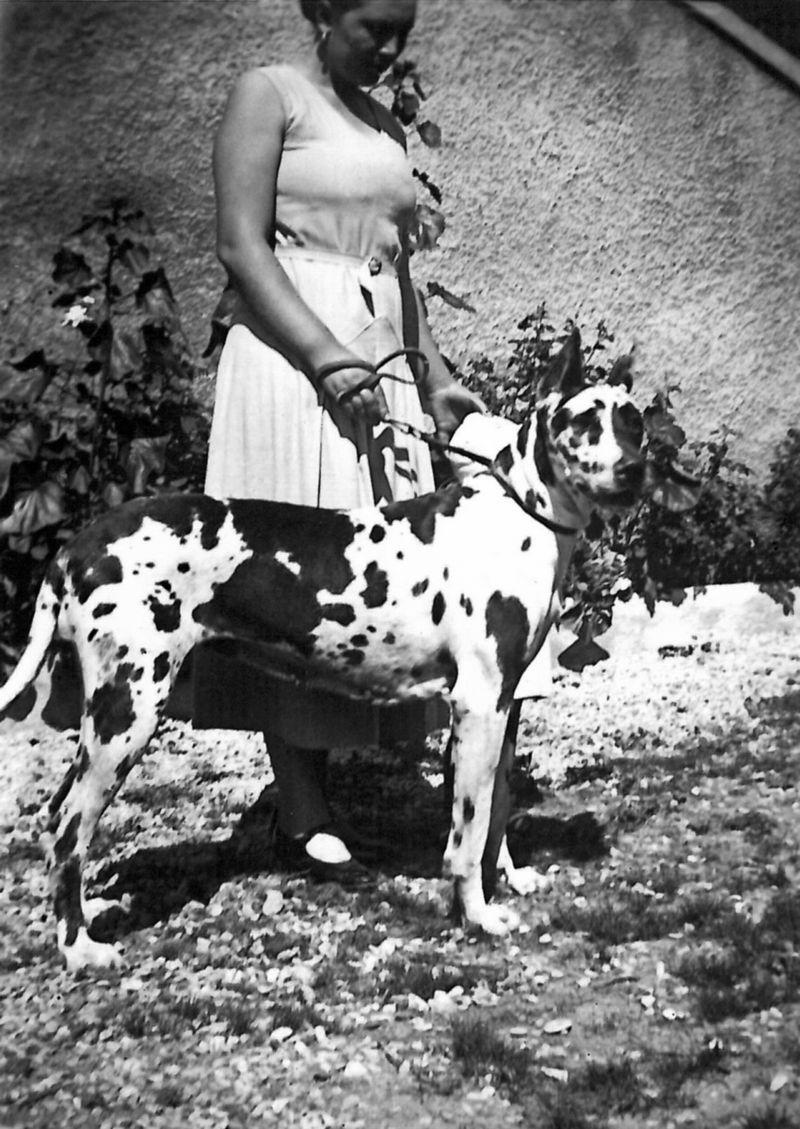 Eliane jeannet + chien danois