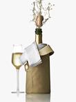 MENU-Rafraîchisseur-champagne-05-vGM